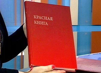 В Азербайджане растет число видов, которые должны быть занесены в Красную книгу